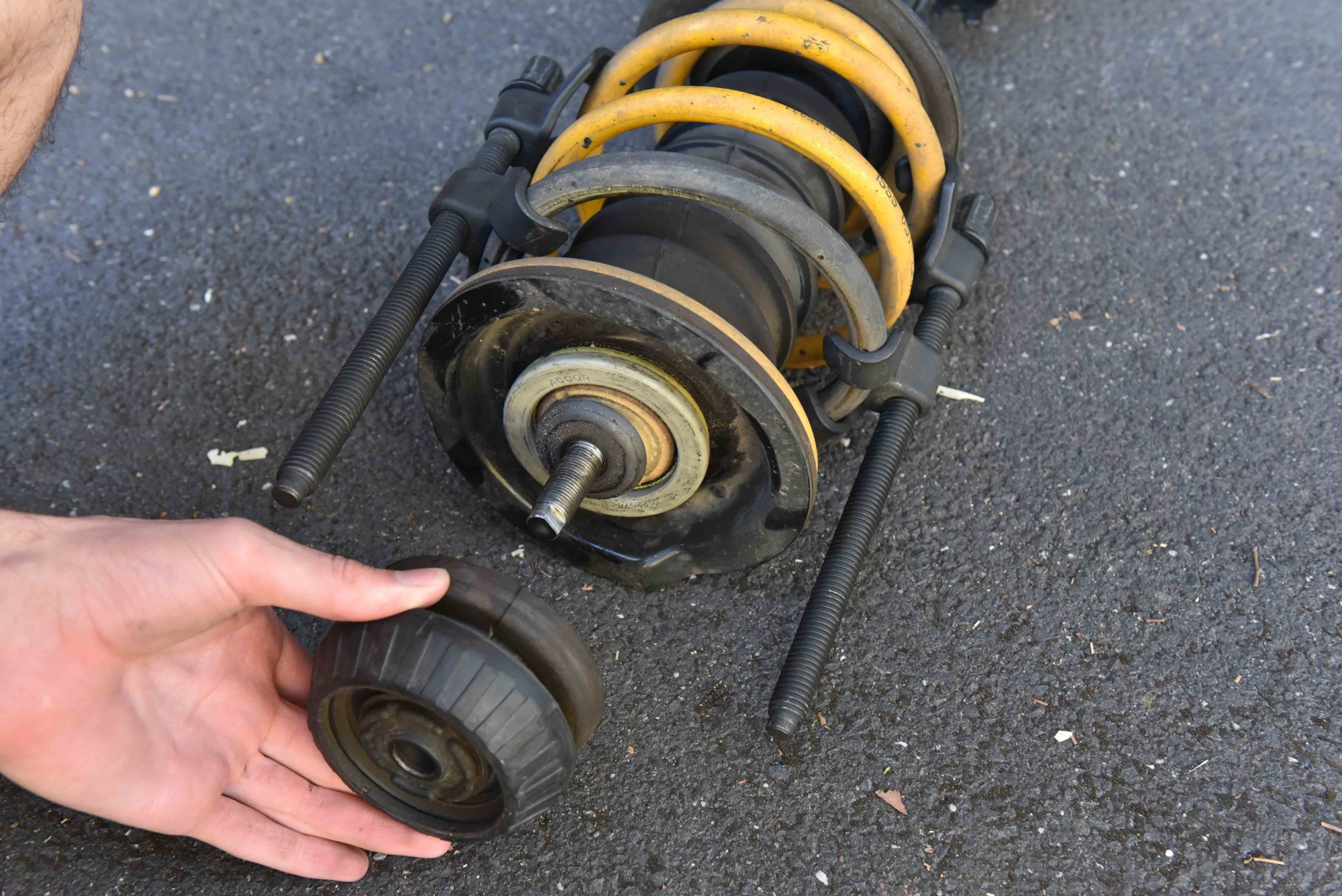 VE Commodore Front Strut
