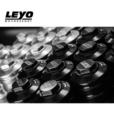 Leyo Motorsport Oil Filter Housing 2