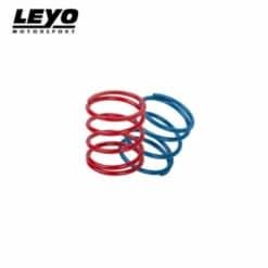 LEYO Motorsport Upgrade Spring Kit